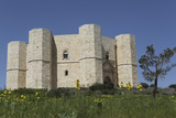 Castel Del Monte  Octagonal Castle  Built for Emperor Frederick Ii in the 1240S  Apulia  Italy