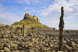 Lindisfarne Castle  Holy Island  Northumberland  England  United Kingdom  Europe