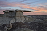 King of Wings at Sunset  Bisti Wilderness  New Mexico  United States of America  North America
