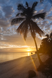 Anda Beach  Bohol Island  Visayas  Philippines  Southeast Asia  Asia