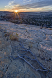 Sunrise from Atop a Sandstone Hill