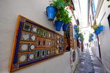 Calle De Las Flores  Cordoba  Andalucia  Spain