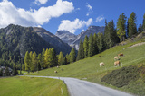 Road to Albula Pass  Graubunden  Swiss Alps  Switzerland  Europe