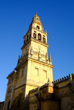 The Bell Tower of the Mezquita Cathedral  Cordoba  Andalucia  Spain