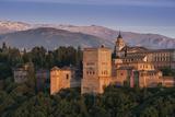 Alhambra  Granada  Province of Granada  Andalucia  Spain