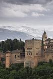 Alhambra  Granada  Province of Granada  Andalusia  Spain