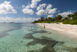 Spotts Beach  Grand Cayman  Cayman Islands  West Indies  Caribbean  Central America