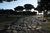 Main Decumano in the High Street  Ancient Ostia (Ostia Antica)  Rome  Lazio  Italy  Europe