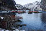Nusfjord  Lofoten Islands  Arctic  Norway  Scandinavia