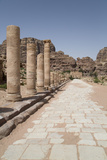 The Colonnaded Street  Dating from About 106 Ad  Petra  Jordan  Middle East