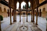 Palace of the Lions (Palacio De Los Leones)  the Alhambra  Granada  Andalucia  Spain