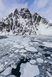 Ice Floes Choke the Waters of the Lemaire Channel  Antarctica  Polar Regions
