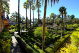 Dance Gardens  Real Alcazar  UNESCO World Heritage Site  Seville  Andalucia  Spain