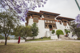 The Garden at the Entrance of the Punakha Dzong Where There are Trees of Different Species  Bhutan