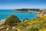 View over Portelet Bay  Jersey  Channel Islands  United Kingdom