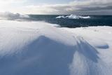 Icebergs Along the Coastline of Ilulissat  Greenland  Denmark  Polar Regions