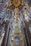 Sagrada Familia  Barcelona  Catalonia  Spain