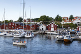Koster Islands  Vastra Gotaland Region  Sweden  Scandinavia  Europe