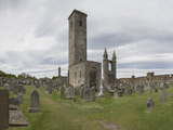 St Andrews Cathedral Ruins  St Andrews  Fife  Scotland  United Kingdom
