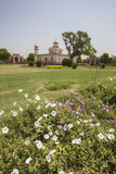 Colorful Flowers Bloom in the Garden Chahar Bagh