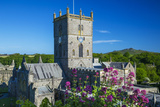 St Davids Cathedral  Pembrokeshire  Wales  United Kingdom