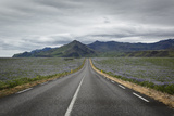 Empty Road  Iceland  Polar Regions