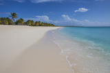 Barbuda  Antigua and Barbuda  Leeward Islands  West Indies