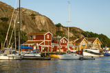View over the Port  Grebbestad  Bohuslan Region  West Coast  Sweden  Scandinavia  Europe