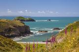 Solva  Pembrokeshire  Wales  United Kingdom