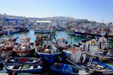 Fishing Harbour  Tangier  Morocco  North Africa  Africa