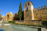 The Arab Puerta De Almodovar and the Mediaeval Wall  Cordoba  Andalucia  Spain
