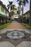 Road Leading to the Sultan Mosque in the Arab Quarter  Singapore  Southeast Asia  Asia