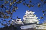 Himeji Castle  at Dusk  Himeji  Kansai  Honshu  Japan