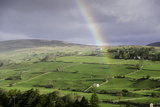 A Rainbow over the Countryside of Swaledale  Yorkshire Dales  Yorkshire  United Kingdom