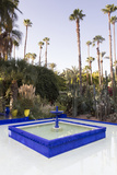 Fountain  Jardin Majorelle  Owned by Yves St Laurent  Marrakech  Morocco  North Africa  Africa