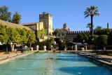 Alcazar De Los Reyes Cristianos  Cordoba  Andalucia  Spain