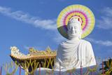 Statue at Vien Minh Pagoda  Ben Tre  Mekong Delta  Vietnam  Indochina  Southeast Asia  Asia