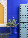 Blue Paintwork  Jardin Majorelle  Owned by Yves St Laurent  Marrakech  Morocco