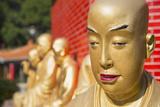 Buddha Statues at Ten Thousand Buddhas Monastery  Shatin  New Territories  Hong Kong  China  Asia