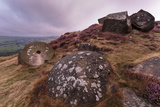 Millstone Amongst Heather and Lichen Covered Boulders at Dawn