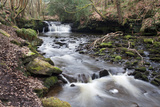 Waterfall on Harden Beck in Goitstock Wood  Cullingworth  Yorkshire  England  UK