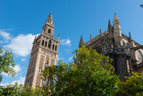 Sevilla Cathedral and Giralda  Seville  Andalucia  Spain