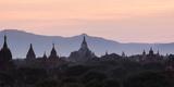 View Towards Shwesandaw Temple  Pagodas and Stupas at Sunset  Bagan (Pagan)  Myanmar (Burma)