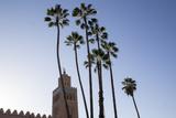 Minaret of Koutoubia Mosque with Palm Trees  UNESCO World Heritage Site  Marrakesh  Morocco