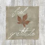 Feel Gratitude