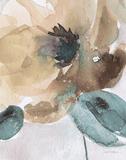 Watercolor Poppy II Reproduction d'art par Carol Robinson