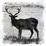 Birchbark Deer