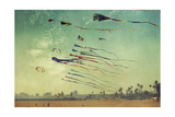 Kites and Beach