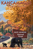 White Mountain National Forest  New Hampshire - Kancamagus Scenic Byway