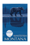 Whitefish  Montana - Bear at Night